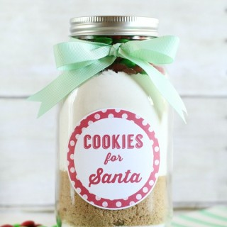 Cookies for Santa Jar Gift
