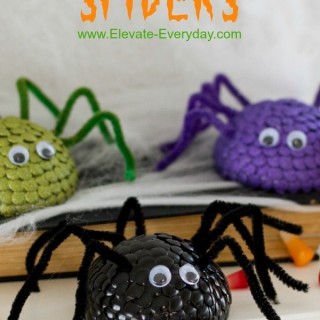 Thumb Tac Spiders
