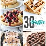 30 Great Waffle Recipes