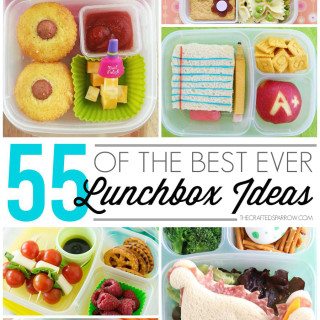 55 of The Best Ever Lunchbox Ideas & Giveaway