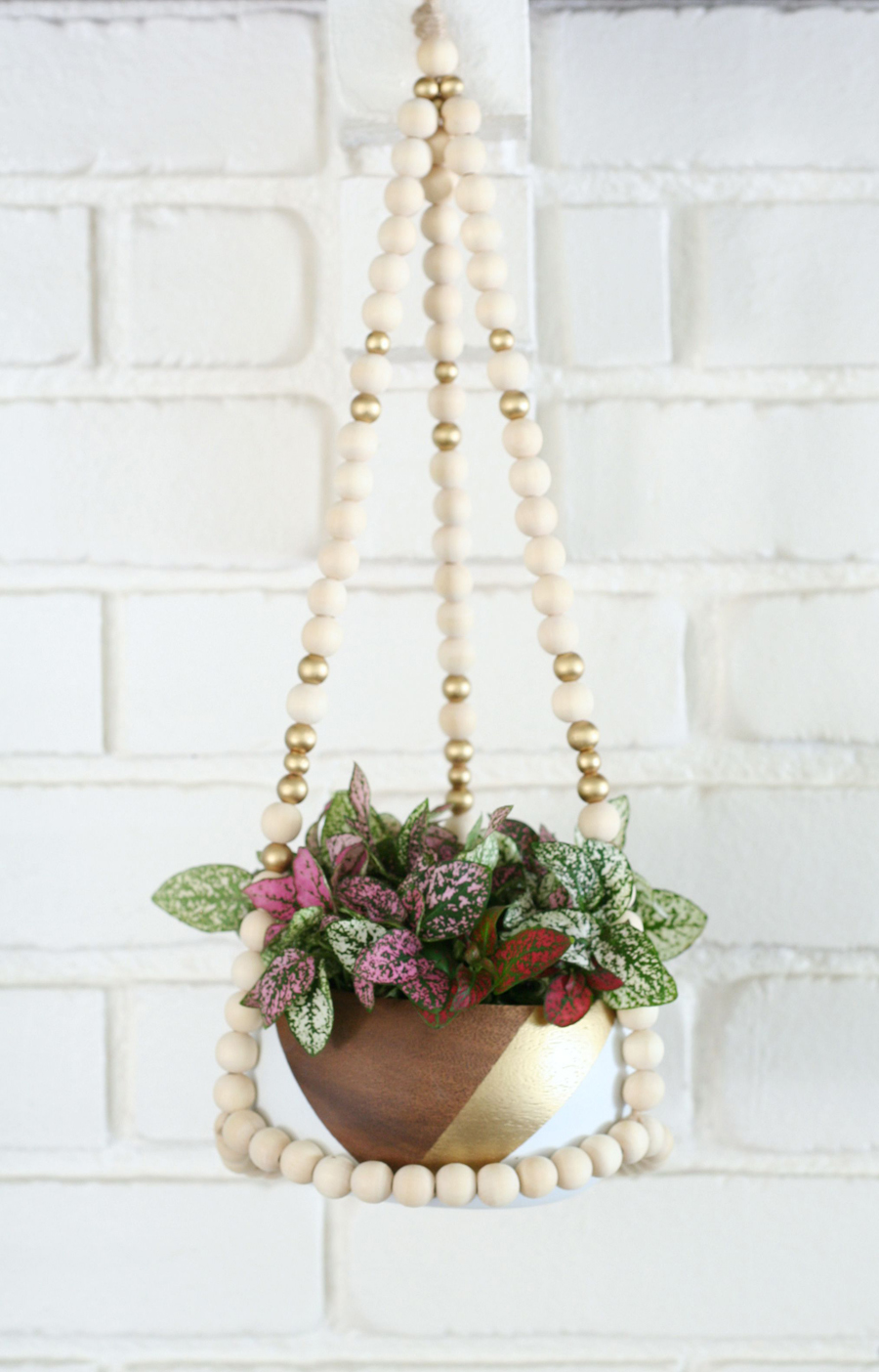 Wire Wall Plant Hanger