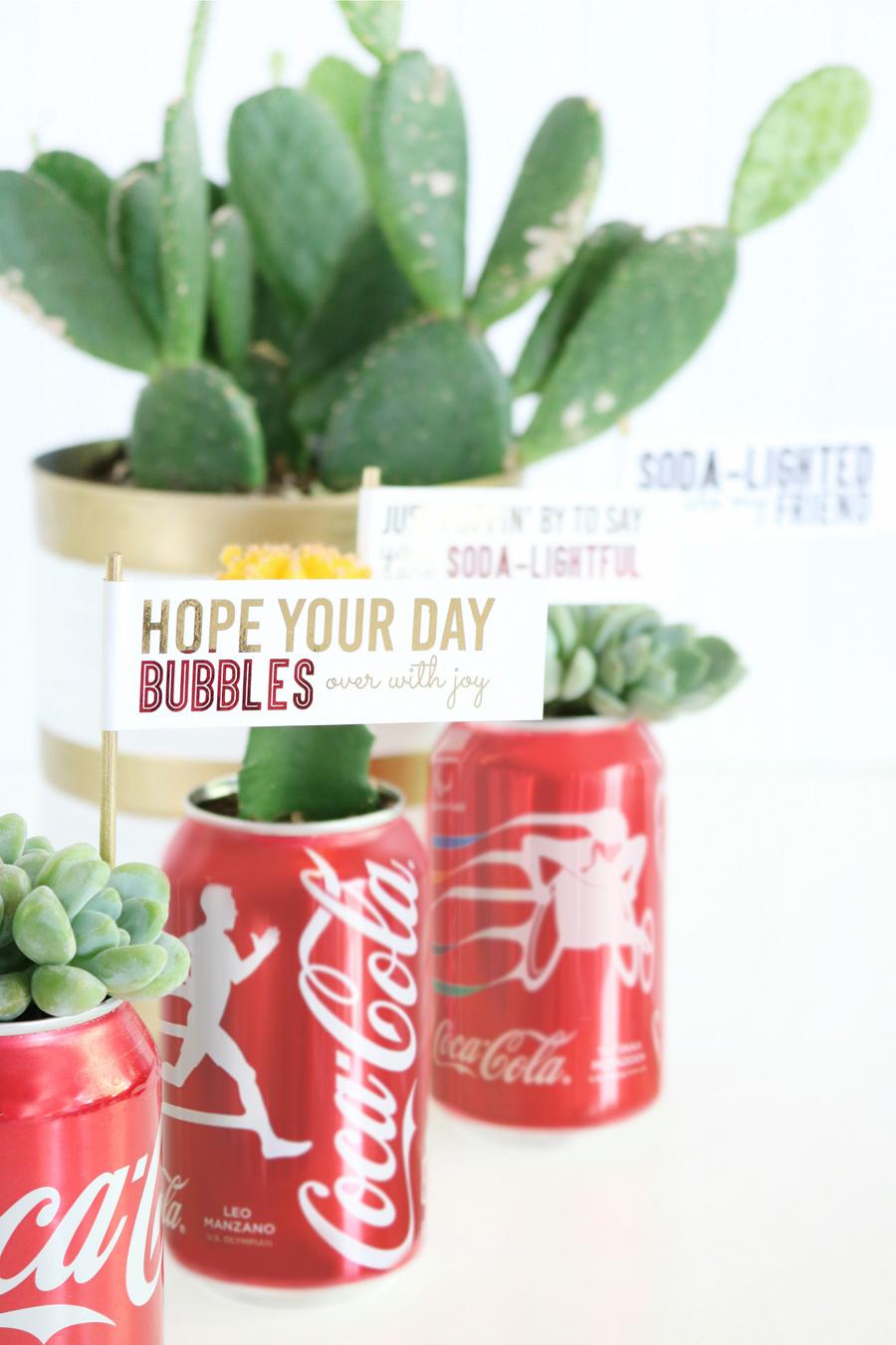 DIY Coca-Cola Succulent Gift Idea