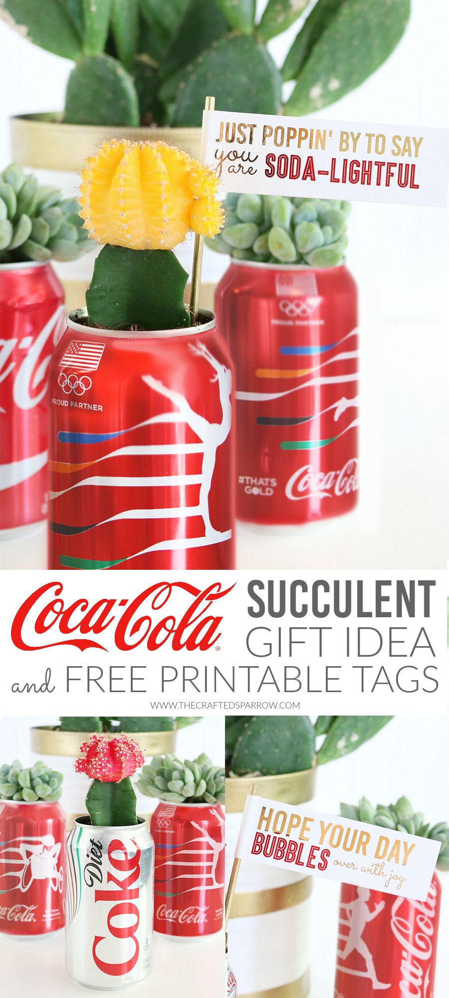DIY Coca-Cola Succulent Gift Idea