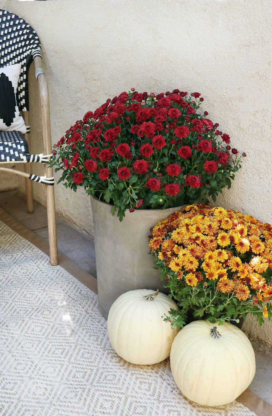 Black & White Fall Porch - BHG Live Better Fall Mums