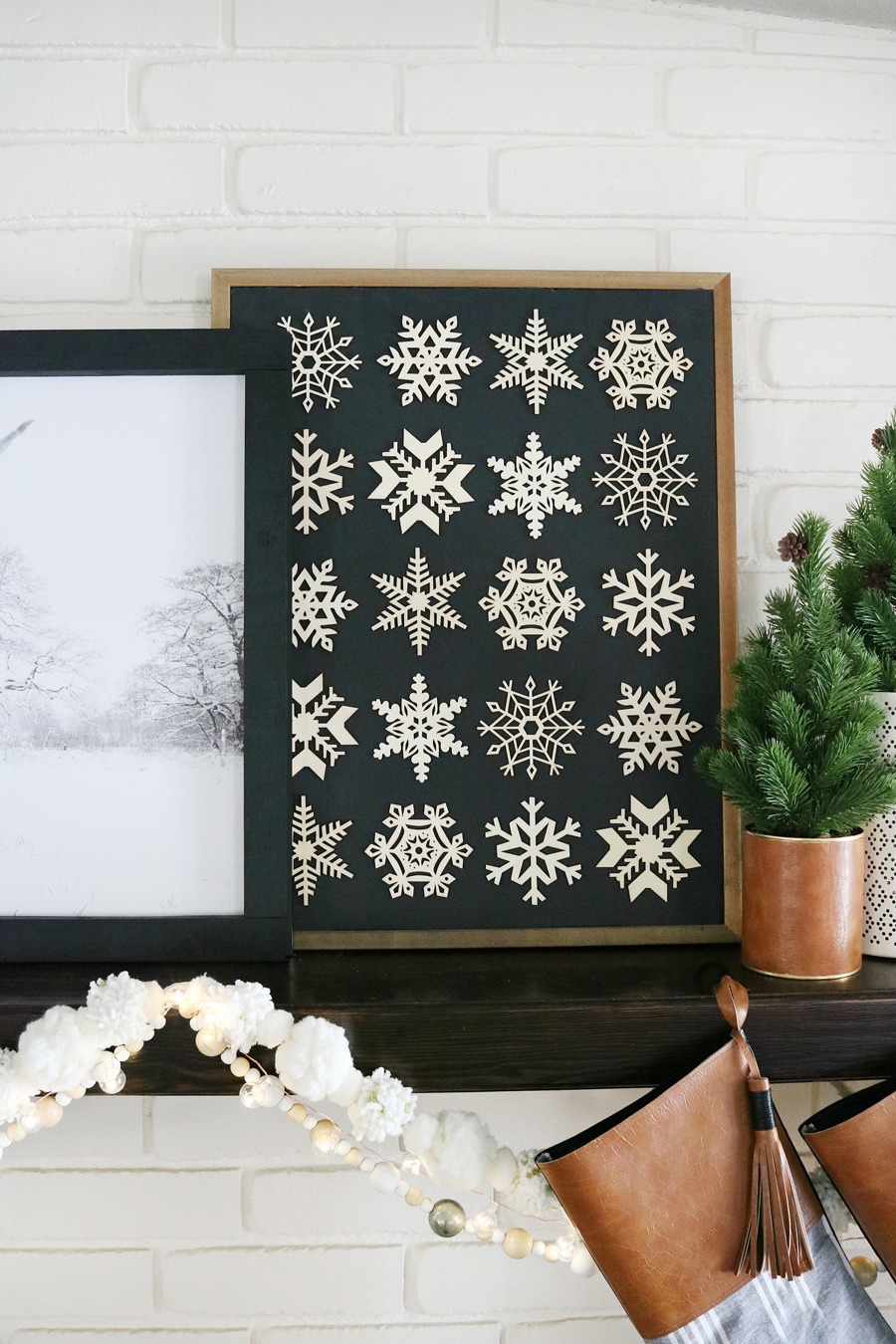 Easy DIY Snowflake Specimen Art